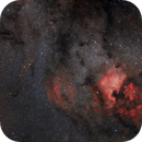 From IC 5146 Cocoon Nebula to IC 5070 Pellican Nebula,                                Marzio Bambini
