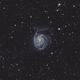 M101,                                Pogo30