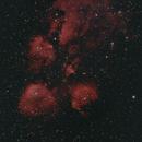 Cat's Paw Nebula,                                Jairo Amaral