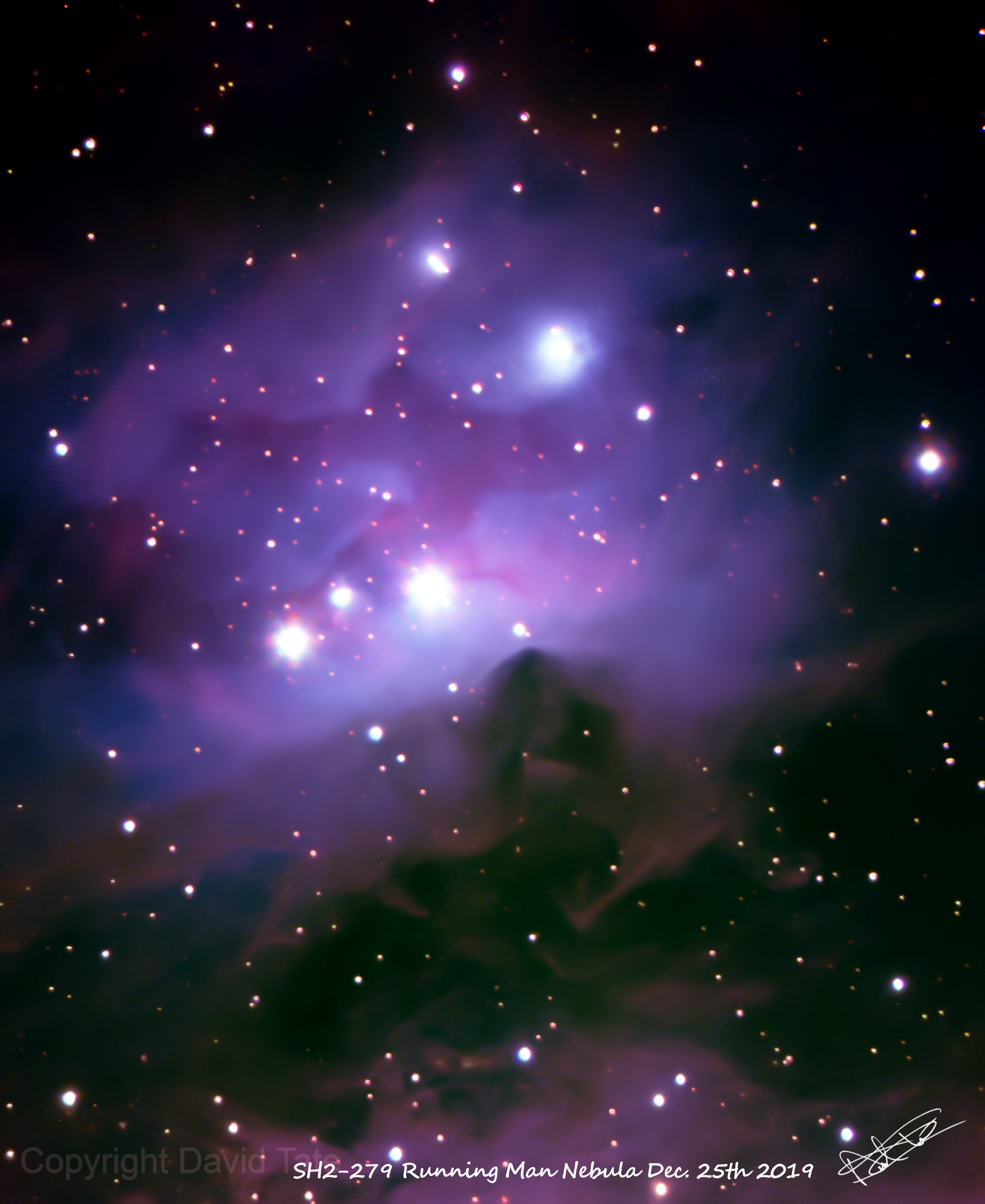 SH2-279 Running Man Nebula,                                David Tate