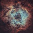 NGC 2237 Rosette nebula HOO,                                LAMAGAT Frederic
