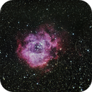 Last rose of spring: Rosette Nebula &  NGC2244,                                Joostie
