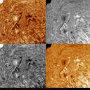 sun 16-06-12,                                Giuseppe Petralia