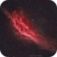 California the Nebula,                                Maroun Habib