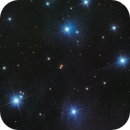 A heaventree of stars hung with humid nightblue fruit (M45),                                Ben