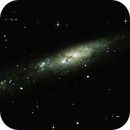 NGC 55 (Southern Gems Collection),                                Fabian Rodriguez Frustaglia