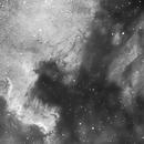 North America & Pelican Nebulae in Ha,                                Paul Hutchinson