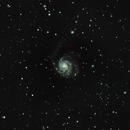 M101 Pinwheel Galaxy,                                Roland Schliessus