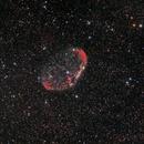 Crescent Nebula,                                Shannon Calvert