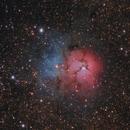 Trifid Nebula,                                Jeff Coldrey