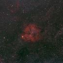 IC 1396,                                gmartin02