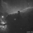Horsehead and flame nebula,                                Justin Daniel