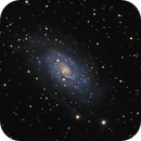 NGC 2403,                                Roberto Mosca
