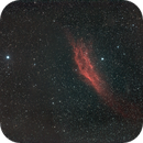 NGC 1499 - Widefield @ 135 mm,                                Wolfgang Zimmermann