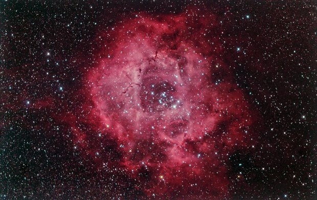 NGC 2237 Rosette Nebula,                                Hata Sung