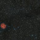 Cocoon Nebula,                                Arno Rottal