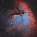 NGC 281 Pacman Nebula,                                Jens Zippel