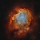 NGC 2174 Monkeyhead Nebula in HOO,                                Roland Schliessus