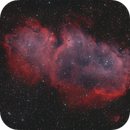 IC1848 Embryo Nebula,                                Rolf Dietrich
