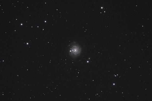 The sliced onion galaxy, NGC 3344,                                Steven Bellavia
