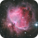 Orion Nebula,                                Samuel Müller