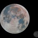 Harvest moon,                                Roberto Ferrero