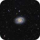 M95 (NGC 3351) A Barred Spiral In Leo,                                John Hayes
