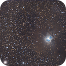 Iris nebula,                                Alan Ćatović