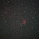 Rosette Nebula,                                raykwong