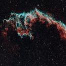 Bat Nebula,                                RPrevost