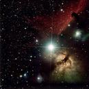 IC 434 - Horsehead Nebula,                                Niels Wilkening