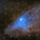IC 4592 Blue horsehead,                                ofiuco