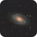 Messier 81,                                Andrew Burwell