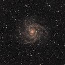 IC 342,                                Gary Imm
