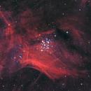 NGC 3293 Open Cluster in Carina 20210401 3600s SHH 01.4.3,                                Allan Alaoui