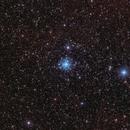 Tau Canis Majoris Cluster - NGC 2362,                                Michael Feigenbaum