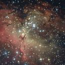 Eagle Nebula,                                Luca Fumagalli