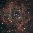Rosette Pix Insight and photoshop process,                                Alan Hancox