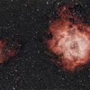 Rosette nebula widefield,                                Jganz