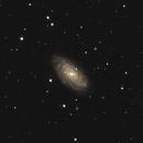 NGC 3953,                                Riedl Rudolf