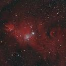 Christmas Tree Cluster/Cone Nebula,                                KiwiAstro