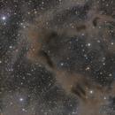 LBN 468 & Gyulbudaghian's Nebula in Cepheus,                                Ara