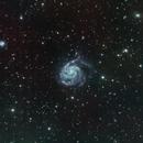 M101 Deep Sky West (DSW) in LRGB with H-alpha,                                jerryyyyy