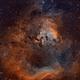 Sh 2-171 and NGC7822,                                Tim Hutchison