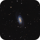 NGC2903,                                Frederick Steiling