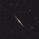 NGC4565 Needle Galaxy,                                David Toole