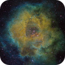 The Rosette in Narrowband,                                Don Walters