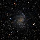 NGC 6946 - Fireworks Galaxy,                                Danilo Caldini