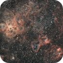 Tarantula Nebula Revisted,                                Jeff