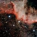 Cygnus Wall (of North America nebula),                                Andrew Gutierrez